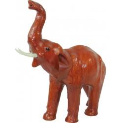 Słoń Ze Skóry